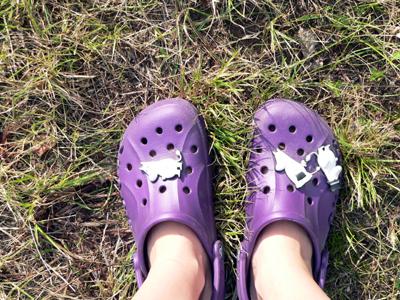 batai1